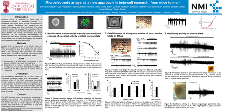 Syndapin I is a key regulator of beta cell endocytosis and ...